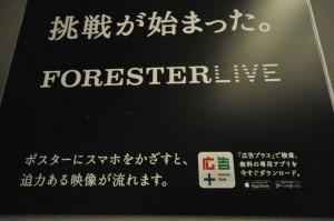 FORESTERLIVE20131213-07
