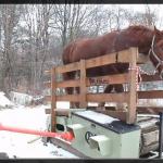 電気でも燃料でもなく馬力を発生させる動力源【動画】 - HorsePower_01