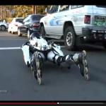 驚愕の全身ローラースケート男がキモかっこいい【動画】 - Rollerman_03