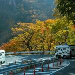 おススメ秋の紅葉ドライブ【日光編】 -