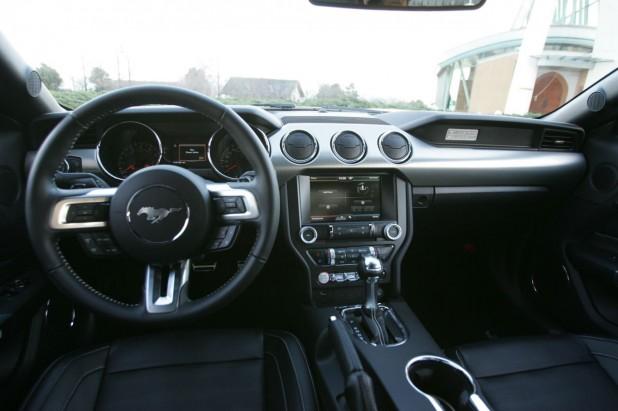 Mustang_055