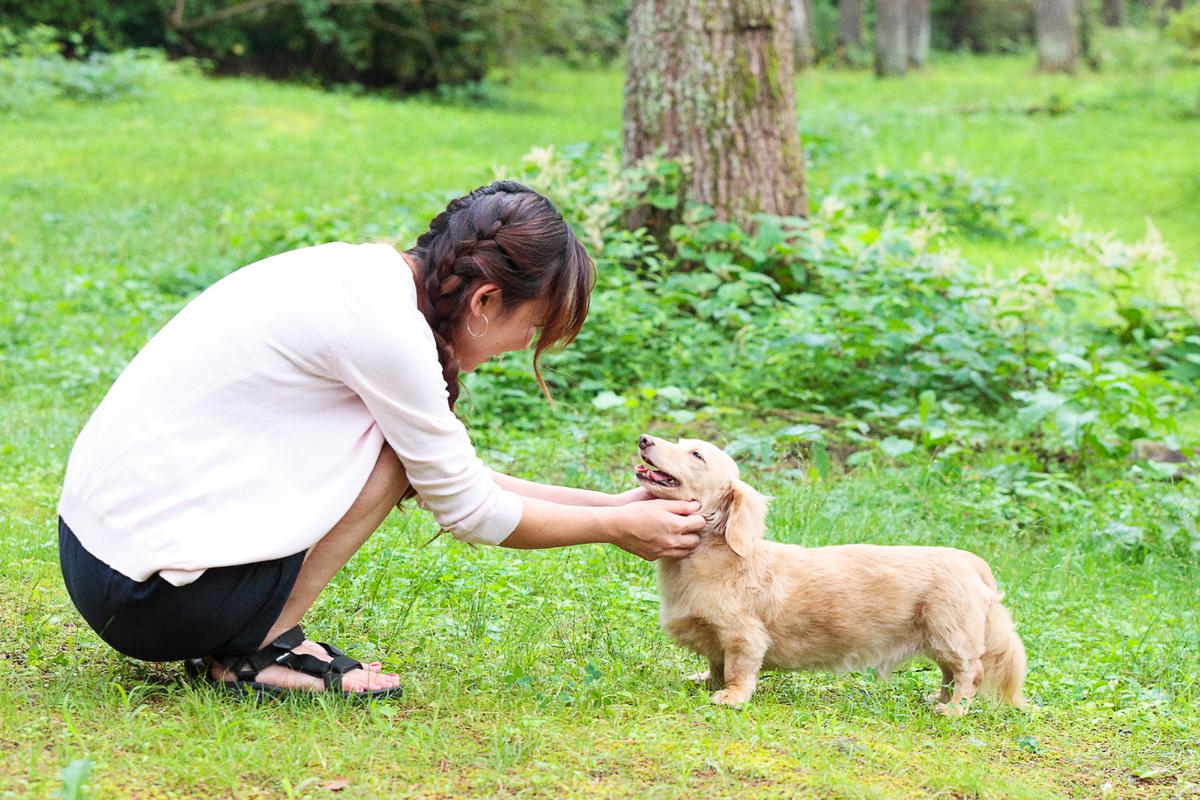 「愛犬とプジョー308 Allure BlueHDiで楽しむ妄想ドライブデート【後編】 PR」の19枚目の画像