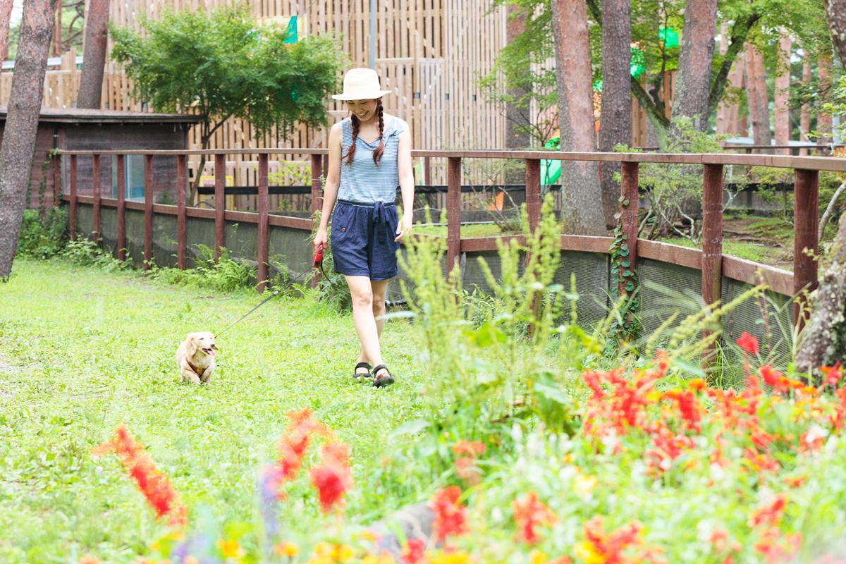 「愛犬とプジョー308 Allure BlueHDiで楽しむ妄想ドライブデート【後編】 PR」の14枚目の画像