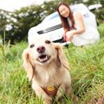 愛犬とプジョー308 Allure BlueHDiで楽しむ妄想ドライブデート【後編】 PR - _MG_6697c