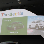 The_Beetle_14