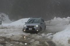 img_2113turini-snow_s