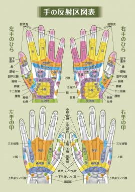 手の反射区1