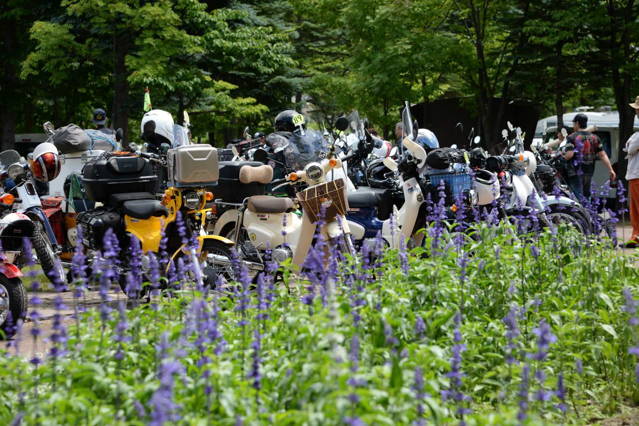 カフェカブパーティーin北海道の会場風景6