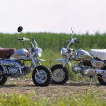 「家に原付バイク(125cc以下含む)があるならファミリーバイク特約を検討しよう!【保険/車検のミニ知識】」の4枚目の画像ギャラリーへのリンク