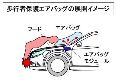 歩行者エアバッグの展開イメージ