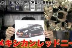 アクアX-URBANはメキシカンレッドニーが似ている