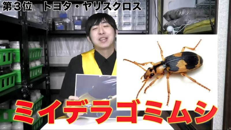 似ている昆虫としてミイデラゴミムシ