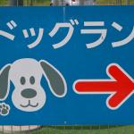 新東名高速道路・NEOPASA浜松(下り)はドッグランに併設されたカフェで、ワンちゃん用のグッズを販売【高速道路SA・PAドッグラン探訪】 - sa_dogrun_03