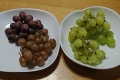 ブドウを比べます