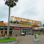 「館山自動車道・市原SA(上り)は南国のリゾート地のようなノンビリとした雰囲気がいっぱい!【高速道路SA・PAドッグラン探訪】」の13枚目の画像ギャラリーへのリンク