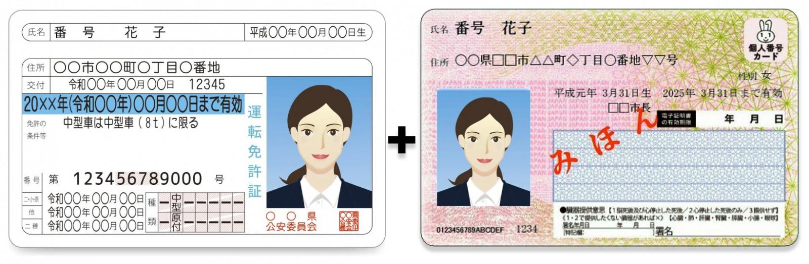 運転免許証とマイナンバーカード(サンプル)