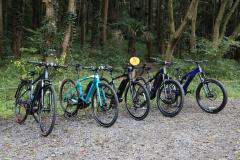 スポーツ電動アシスト自転車のYPJシリーズのマウンテンバイクタイプ