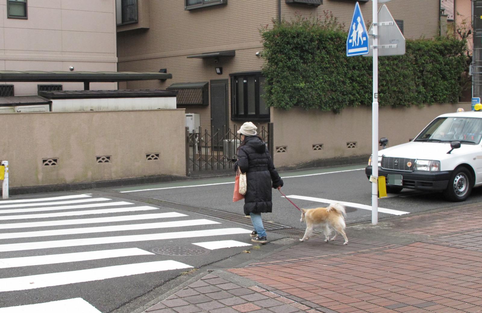 「覚えていますか「横断歩道は歩行者優先」。無視して通過すると大事故や罰則も! 」の4枚目の画像