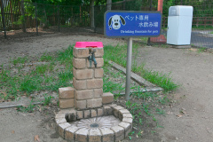 紀ノ川サービスエリア04