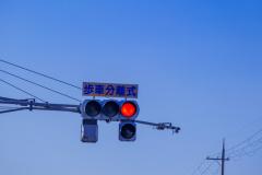 歩車分離式信号機