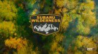 スバル「ウィルダネス」第2弾。フォレスター・ウィルダネスは9月2日デビュー確定【動画】 - Subaru Wilderness_004