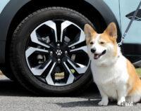 ホンダの純正愛犬用アクセサリー「Honda Dog」シリーズを装着したFIT e:HEV Modulo Xなどを「第七回 アウトドアドッグフェスタin八ヶ岳」に出展 - HONDAACCESS_20210902_2