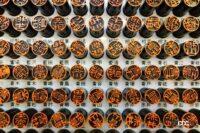 苗字の日/世界初のミスコン開催/スポーティに路線変更したホンダ4代目プレリュード登場!【今日は何の日?9月19日】 - whatday_202109019_02