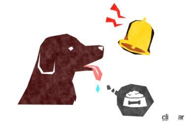 「パブロフの犬」実験イメージ