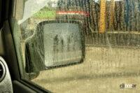 mottled pattern with reproduce raining from inside