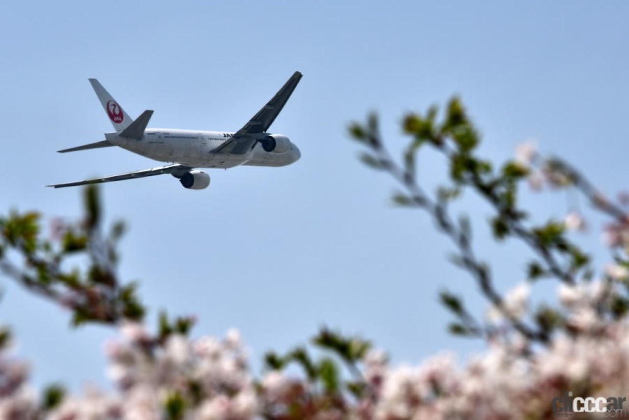 日本航空が営業開始/日本にコアラ6頭が到着/トヨタの5代目クラウン登場!【今日は何の日?10月25日】